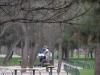 2003-04-03_12.25.19DSCN0991.jpg