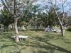 2008-10-25_11,05,59100_3903.JPG